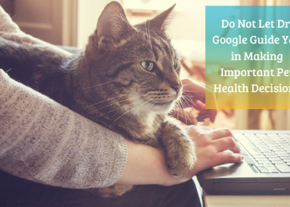 Don't use Google for important pet health questions